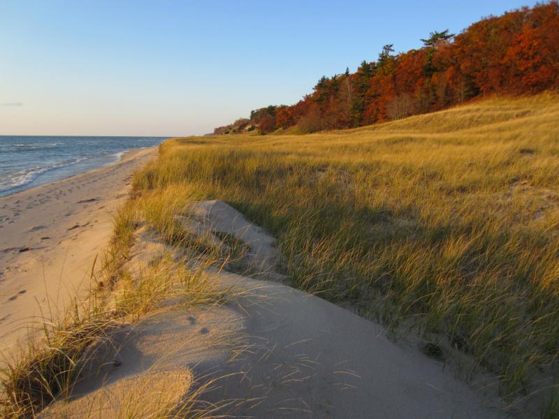 West Michigan Beaches Michigan Dawn Patrol